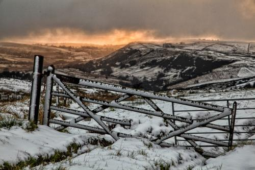 Projected Landscape WinnerWinter's LightRalph Duckett