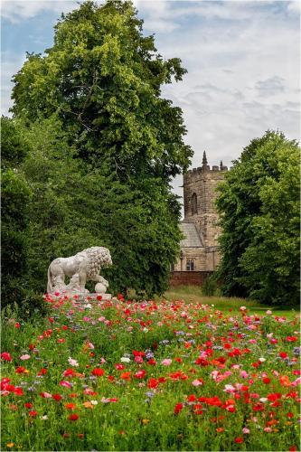 Beginners Com - Kedleston Gardens - Tim Stokes