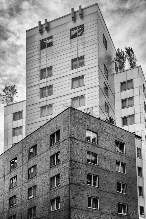 3 buildings on the high line
