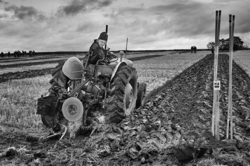 Ploughing-Competition