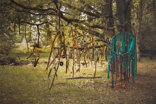 The Sacred tree-