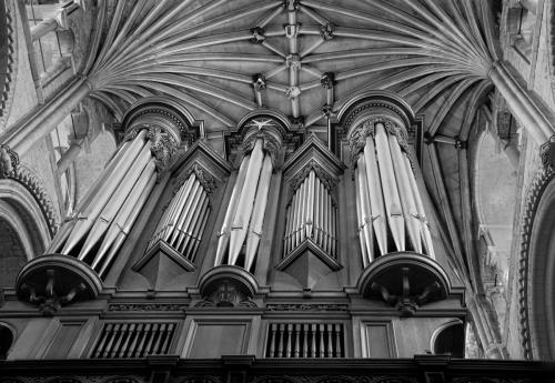Organ pipes in the Cathedral