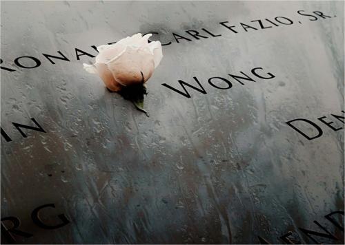 Inter Pdi  Comm GROUND ZERO MEMORIAL Anne Wilcox