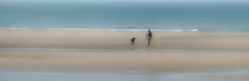 Adv Pdi - Second one man and his dog Lorraine Hardy