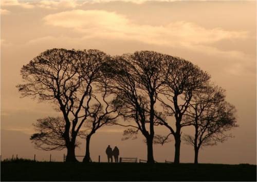 Inter Pdi - HComm Sunset walk Sheenagh Crumley