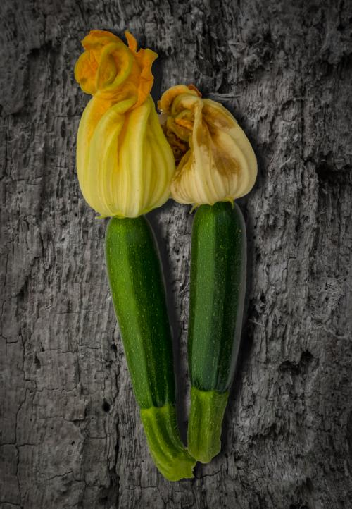 Beginners Print 1st Courgettes Stephen Oakes